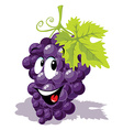 wine grape cartoon vector image