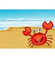A crab at the seashore vector image