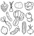doodle of vegetable set art vector image