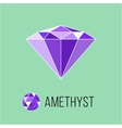 Amethyst flat icon with top view Rich luxury vector image
