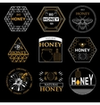 Badges and labels design for bee design vector image