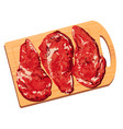 colorful of pieces of meat vector image