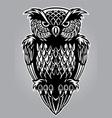 owl bird vector image vector image
