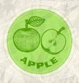 apple vintage paper vector image