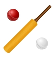 with cricket bat and red white ball vector image