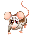 A mouse vector image