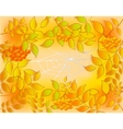 Background of autumn leaves rowan and web with vector image