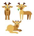 cute baby deer that lies and eats grass vector image