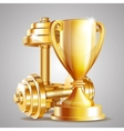 Gold cup with golden realistic dumbbells vector image