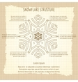 Snowflake structure vintage poster vector image