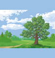 landscape summer forest and oak tree vector image