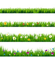 big set flowers frame vector image