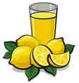 fresh lemon juice vector image