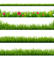 big set green grass and flowers borders vector image