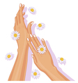 hands with chamomile vector image