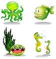 Sea animals in green color vector image