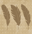 Set vintage feathers vector image