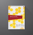Book cover hex vector image