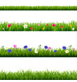 big set green grass and spring flowers borders vector image vector image