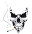 Danger skull smoke a cigarette vector image