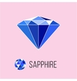 Sapphire flat icon with top view Rich luxury vector image