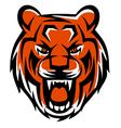 evil tiger vector image