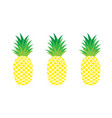set of pineapples exotic fruit vector image