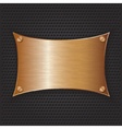 Bronze frame with screws on abstract metallic back vector image vector image
