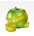Apple with centimeter vector image vector image