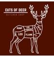 Deer meat cuts in color vector image