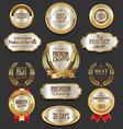 set of retro vintage laurel wreaths and badges vector image
