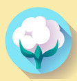 flat cotton icon vector image
