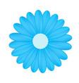 blue flower on white background vector image vector image