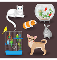 pets set vector image
