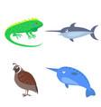 set of four wild animal for children flat design vector image