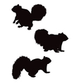 squirrel silhouettes vector image