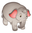 Isolated elephant vector image