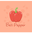 Red Bell Pepper Vegetable vector image