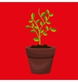 plant pot design vector image