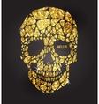 Skull of gold glittering stars vector image
