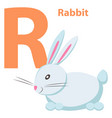 babies english abc letter r with white rabbit flat vector image