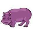 Cute cartoon hippopotamus vector image