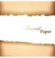 Burnt paper frame vector image