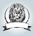 Vintage label with lion head vector image