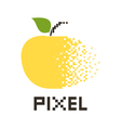 Pixel Apple2 vector image vector image
