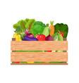 healthy freshly harvested vegetables vector image