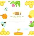 Honey background Natural organic elements vector image