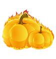 Burning pumpkins vector image