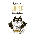 Super Hero cat drawing for greeting card or tee vector image