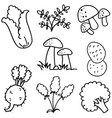 doodle of vegetable various hand draw vector image